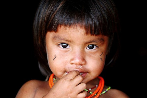 Os índios são responsáveis pela preservação de vários estados brasileiros.