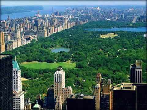 Central Park. (Foto: Divulgação)