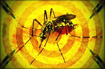 Febre amarela: causas, sintomas, transmissão, tratamento e prevenção.