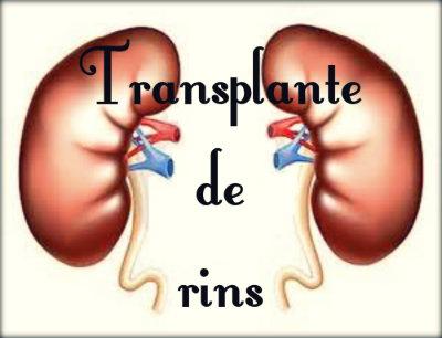 Transplante de rins: cirurgia, pós operatório, vantagens, desvantagens e perigos.