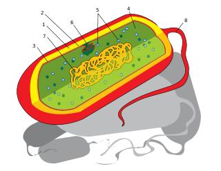Imagem ilustrativa da formação de moléculas.
