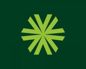 A Vazoli é uma rede de franquias financeira.