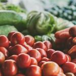 Motivos para o vegetarianismo